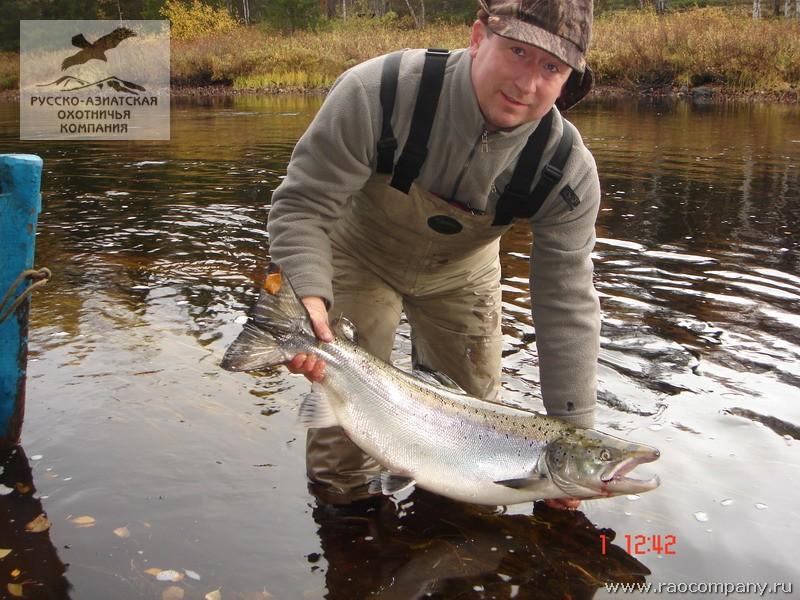 можно ли ловить рыбу в реке пинега