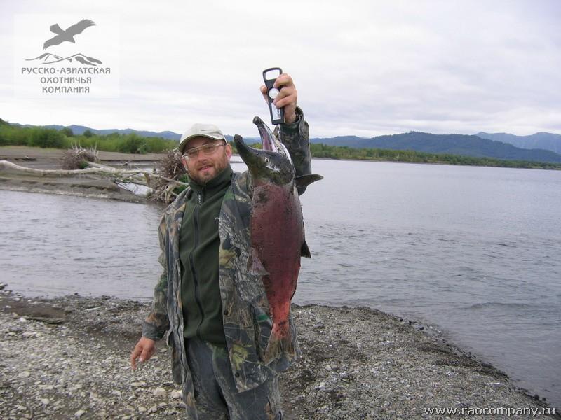 петропавловск камчатский фото рыбалка