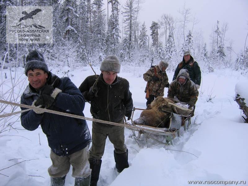 охота в иркутской области видео-дх2