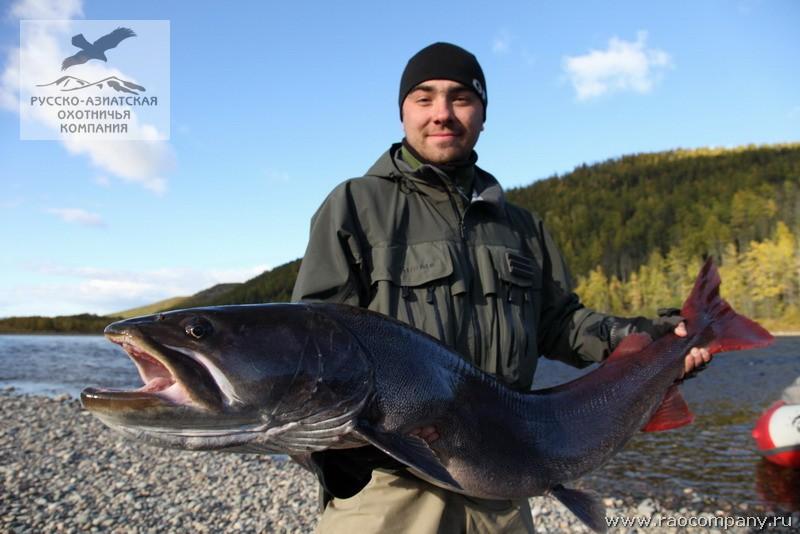 рыбалка недалеко от хабаровска
