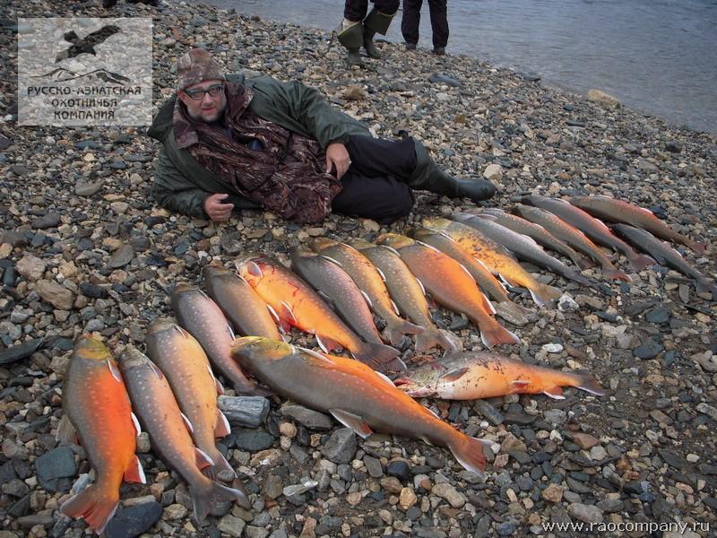 рыбалка таймыр база