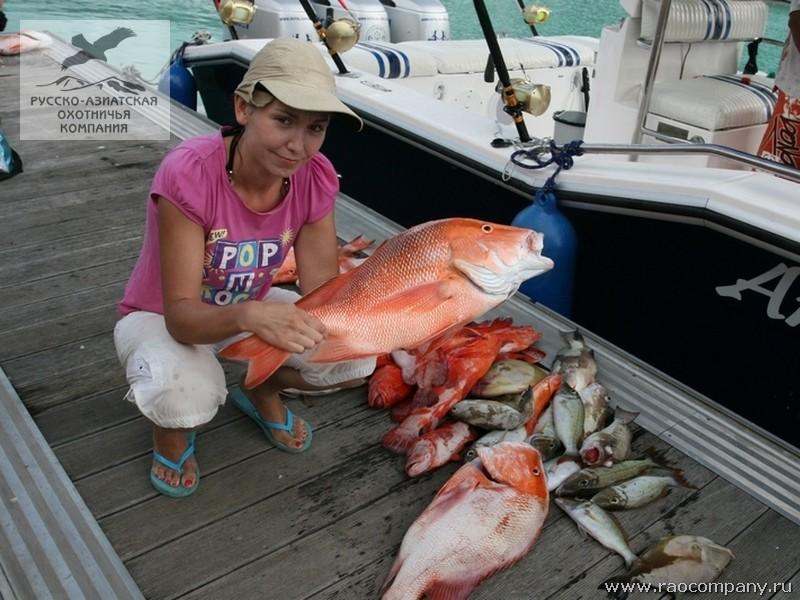 что такое рыбалка на сейшелах