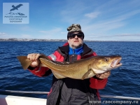 Рыбалка на треску в Баренцевом море