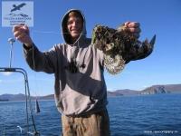 камчатка наличность рыбная ловля  3.6