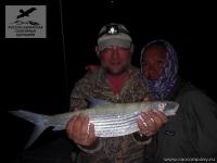 Рыбалка на бонфиш (Bonefish) на Сейшелах