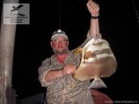 Рыбалка на платакса (Batfish) на Сейшелах