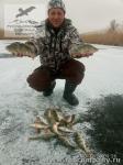 Рыбалка на окуней в Астрахани