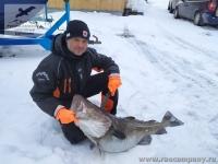 Рыбалка на треску на Кольском полуострове