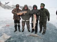 Рыбалка на гольца на Таймыре