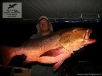 Рыбалка на групера варвара на Сейшелах