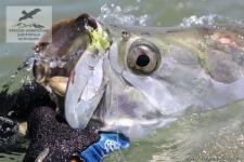 Рыбалка на тарпона в Коста-Рике