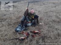 Охота на дикого фазана в Приазовье