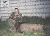 Охота на кабана в Новгородской области