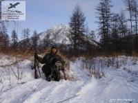 Охота на рябчиков с легавой в Якутии