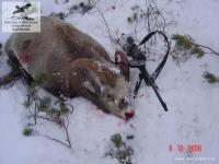 Охота на снежного барана в Восточной Якутии