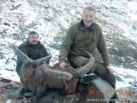 Охота на Дагестанского тура в Осетии