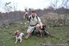 Охота с русским спаниелем