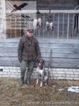 Охота на селезня в Тверской области