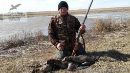 Охота на водоплавающую дичь в Саратовской области