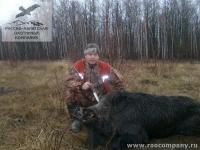 Охота на кабана в Орловской области