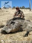 Охота на кабана в Таджикистане