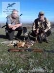 Охота на пушную дичь в Ростовский области с русскими спаниелями