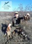 Охота на вальдшнепа в Крыму с русскими спаниелями