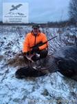 Охота на лося в России