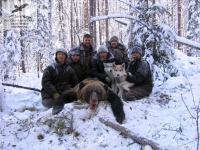 Охота на бурого медведя в Кировской области