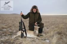 Охота на белохвостую газель (дзерана) в Монголии