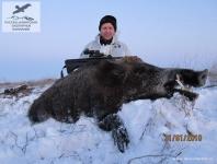 Охота на кабана в Калмыкии