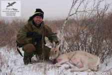 Охота на белохвостую газель в Монголии