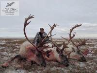 Охота на северного оленя