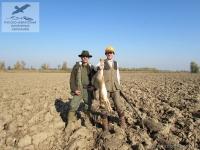 Охота на зайца в Венгрии