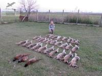 Охота на зайца и фазана в Венгрии