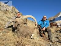 Озота на козерога в Киргизии