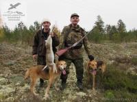 Охота на зайца в Архангельской области