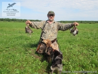 Охота на дупеля в Нижегородской области с русским спаниелем