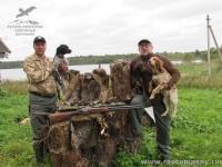 Охота на бекасов и уток с подружейными собаками