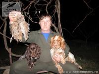 Охота в Крыму с русскими спаниелями на вальдшнепа