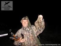 Охота на вальдшнепа в Новгородской области