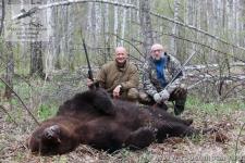 Охота на медведя в Красноярском крае