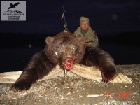 Охота на бурого медведя на Камчатке