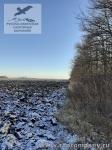 Орловская область, зимние поля