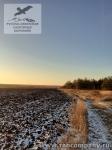 Зимние поля