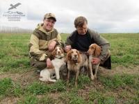 Русской охотничий спаниель Гая с щенками